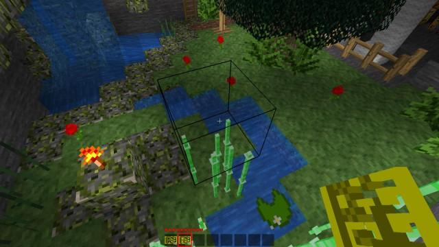 Screenshot pokazujący Plant Trimmera w formie niewidzialnej kostki | Minetest - Mod Plant Trimmer